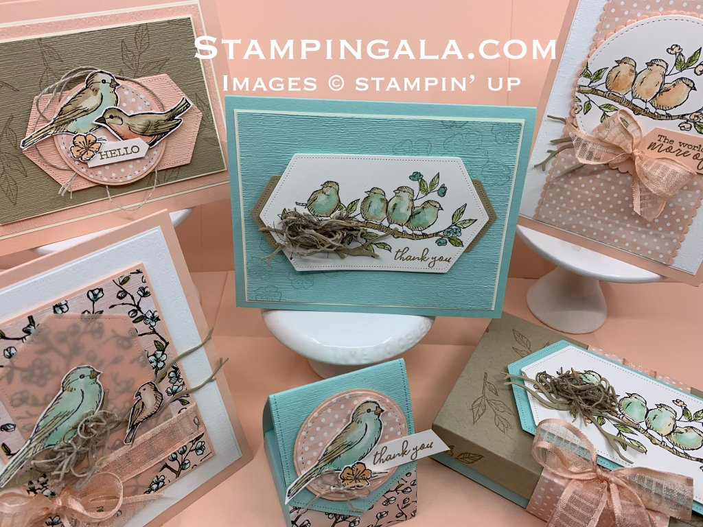 Free as a Bird Class to Go - Stampin' Gala