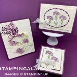 Inspiring Iris stamp set, thank you card & thinking of you card, gift box